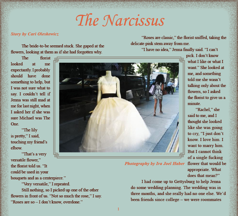 The Narcissus Story By Cari Oleskewicz Artwork By Ira Haber